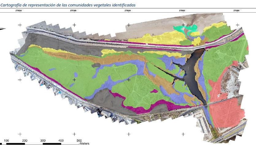 cartografia comunidades vegetales SIMBIO