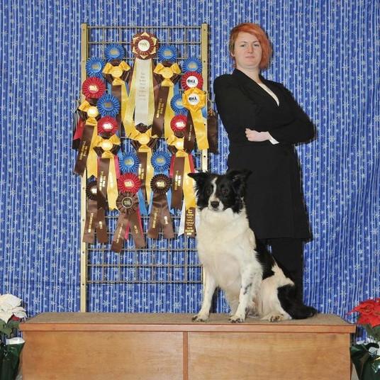 Inter Dog Show 3
