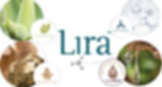 Lira Clinical Ingredient Technology Maquillage Pro Beauty Houston