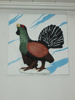 Capercaillie project