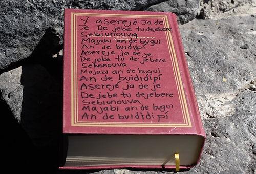 _Venganza epistemica_ .jpg
