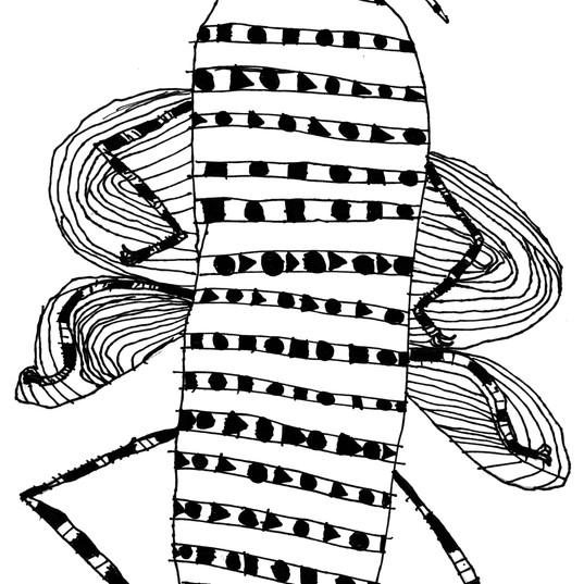 insecte 08 14 15.jpg