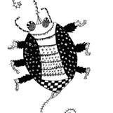 insecte 03 14 15.jpg