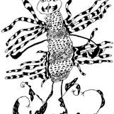 insecte 05 14 15.jpg