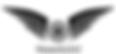 DronIt logo.png