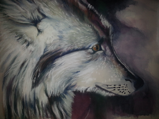 """Portrait of a Wolf"""