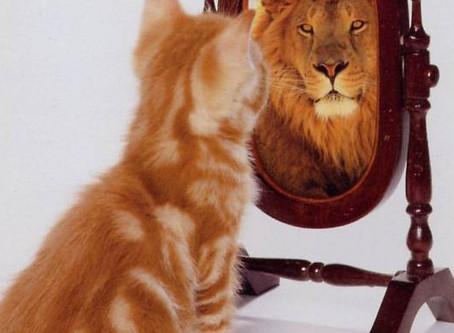 Mirror of God's Love