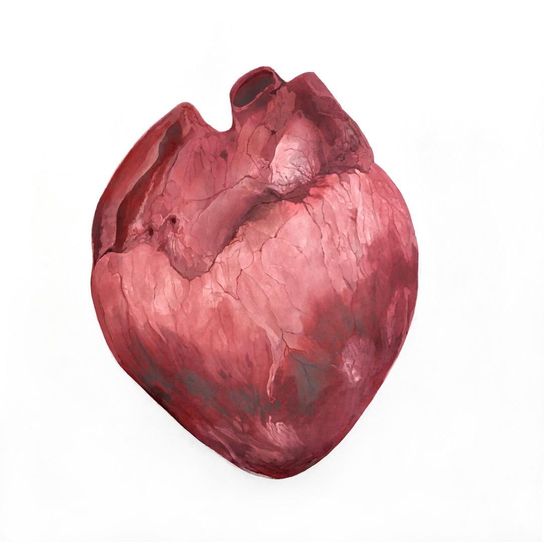 Heart #2