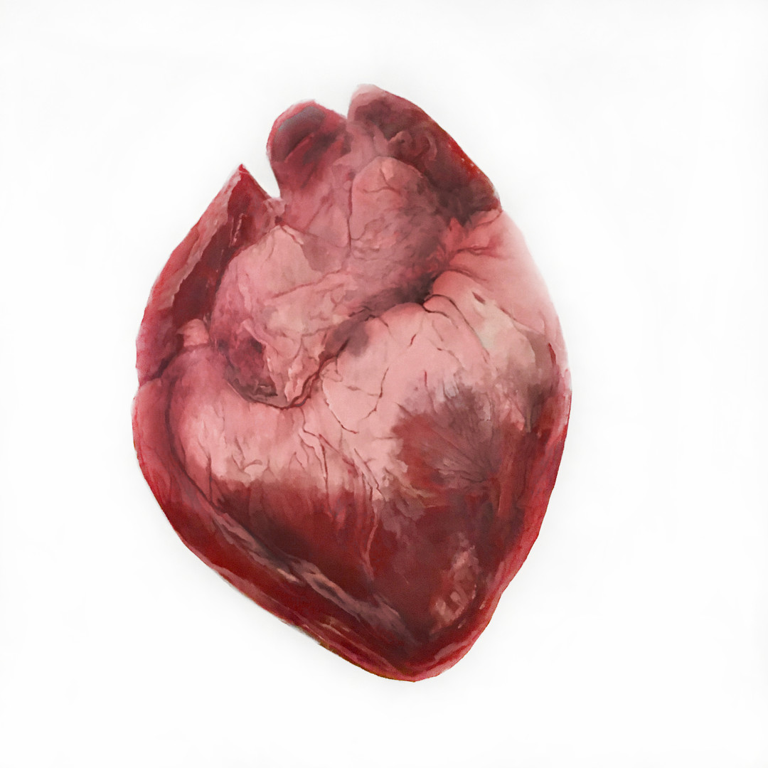 Heart #1
