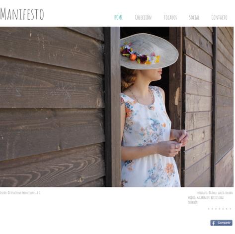 Website Manifesto
