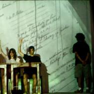 Cegueras para un ensayo. 2009