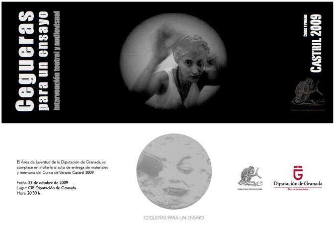 CEGUERAS PARA UN ENSAYO. Flyer.6