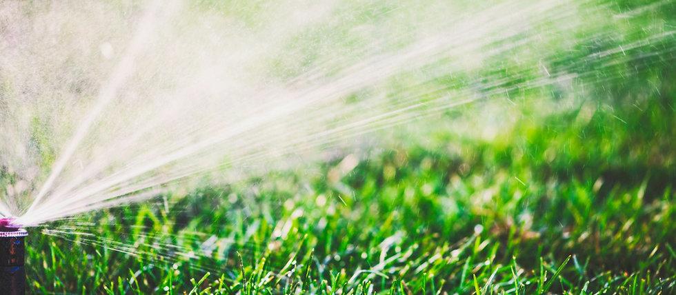 Water%20Sprinkler_edited.jpg