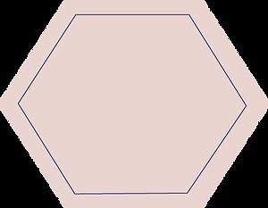 pink shape.png