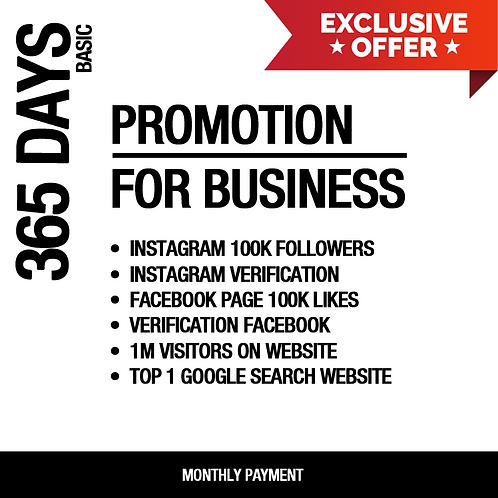 365 Days Promotion For Business (BASIC)