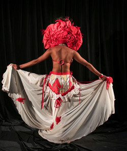 Sturt Desert Pea Gown
