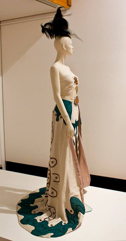 Miss Universe gown