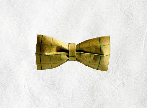 Calligraphy Beaux-Tie