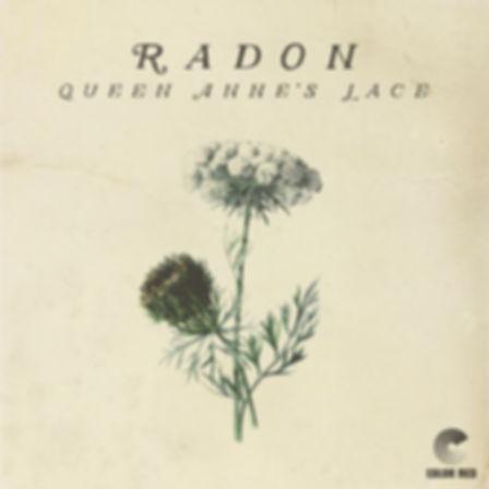 RADON QAL 3000x3000 (1).jpg