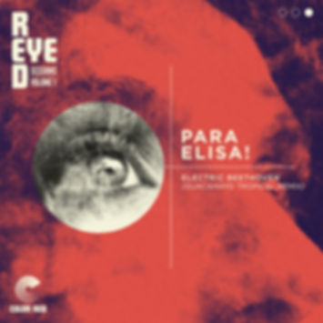 Electric Beethoven - Para Elisa! (Gaucamayo Tropical Remix) - Colo Red Remix - Artwork by Chris Ball