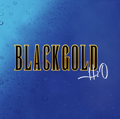 BlackGold H2O Logo Design