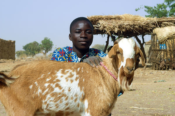 Goat Project Courage of Hope Foundation