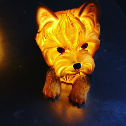Terrier LED  Light