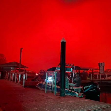 The New Year's Bushfire