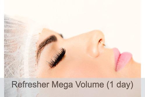 1 Day Refresher Advanced (Mega) Volume Technique