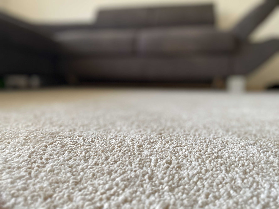 Čistý koberec / úklid koberce / jak vyčistit koberec