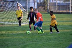 Clarksburg Soccer