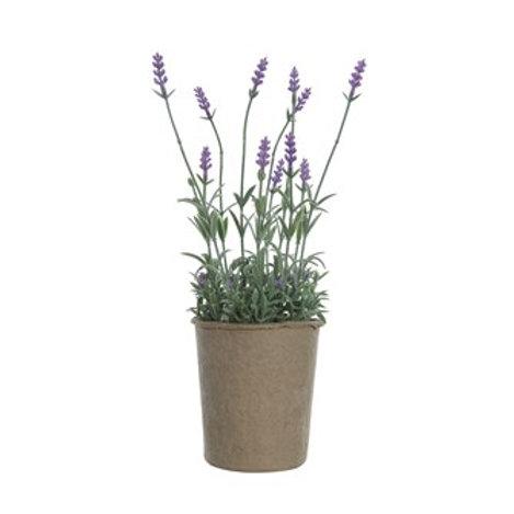 Faux Lavender In Paper Pot