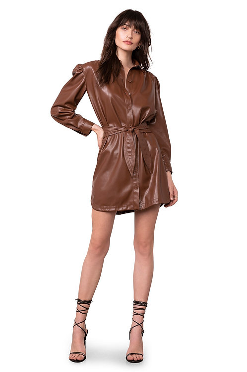 BB Dakota Faux Nelly Vegan Leather Dress