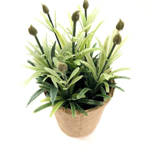 Faux Succulent In Paper Pot