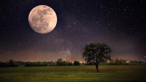volle maan.jpg