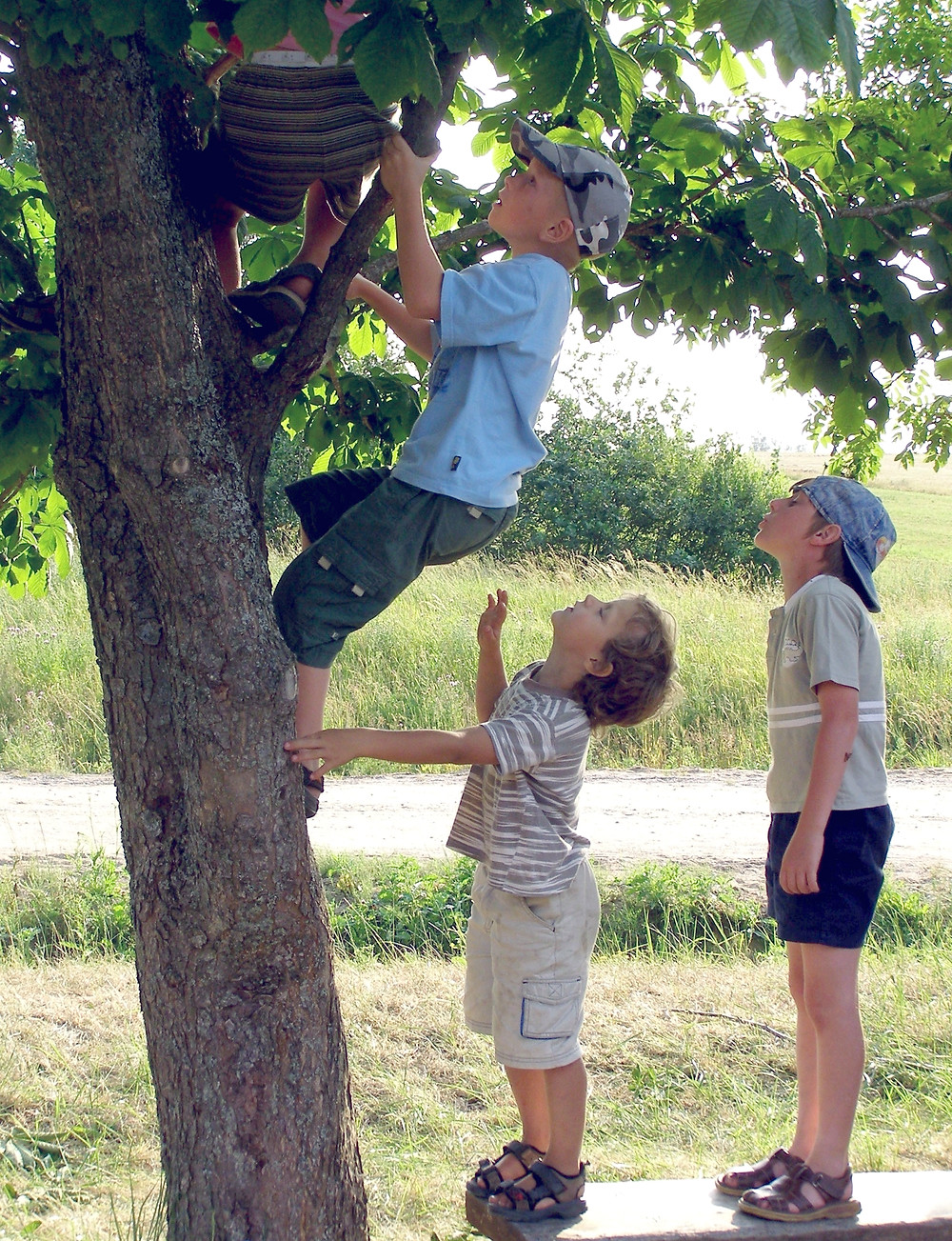 boompje klimmen.jpg