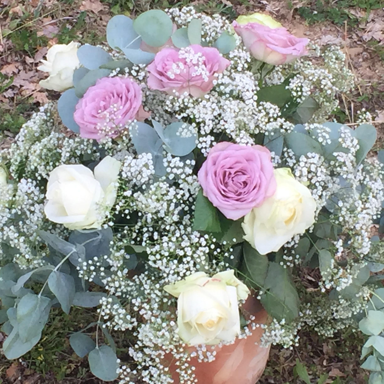 Bellissime rose