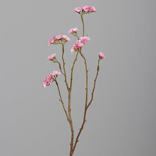 Statice, 67 cm, light-pink