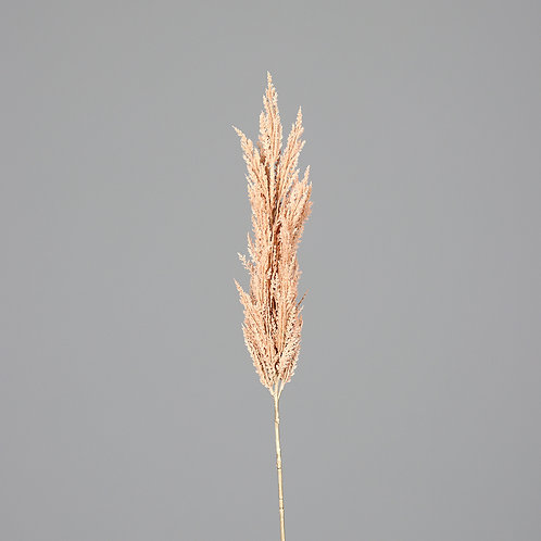 Frond Pampas, 117 cm, light-pink