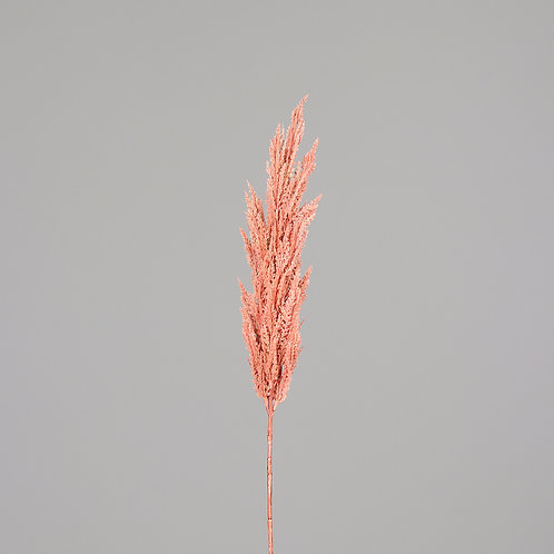 Frond Pampas, 117 cm, rosee