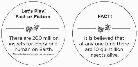 FactorFiction-03.jpg