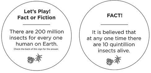 FactorFiction-05.jpg