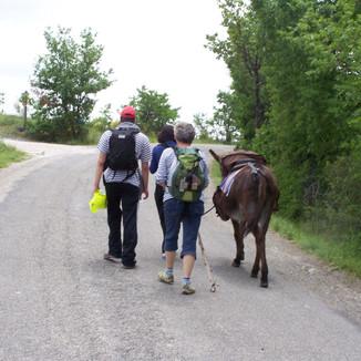 Pèlerinage avec un âne vers Compostelle
