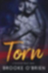Torn_Ebook.jpg
