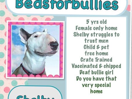 Very special home needed