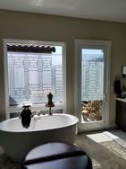 sandblast bathroom windows.jpg