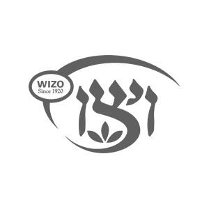 SMM for Wizo