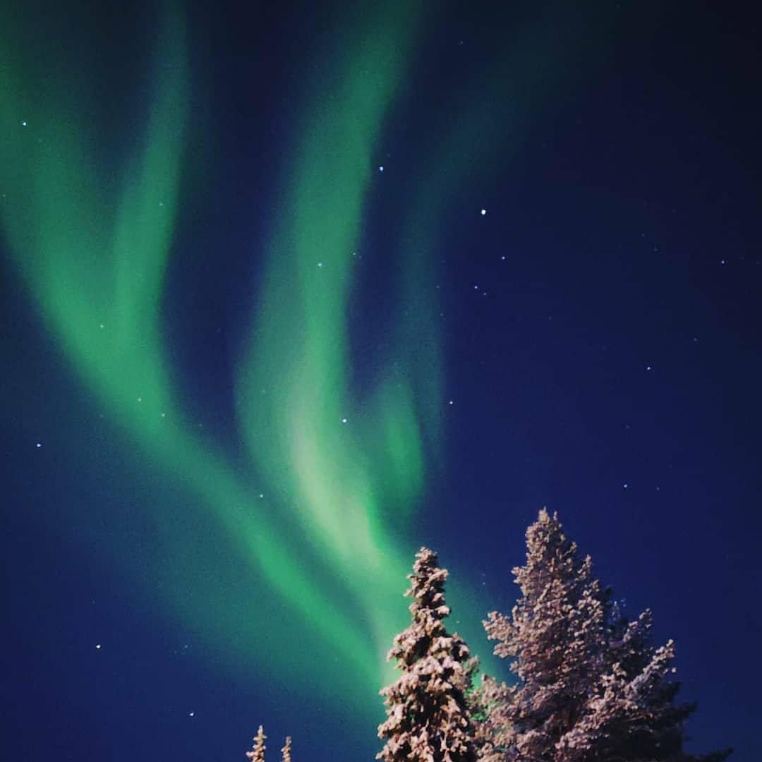 Lapland Surprise