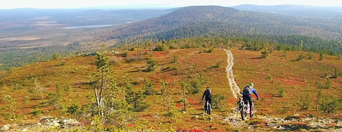 Mountain biking in Pallas-Yllästunturi National Park, best trails in Lapland