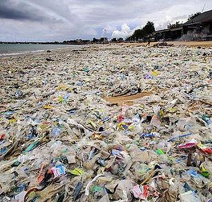 Bali waste.jpg